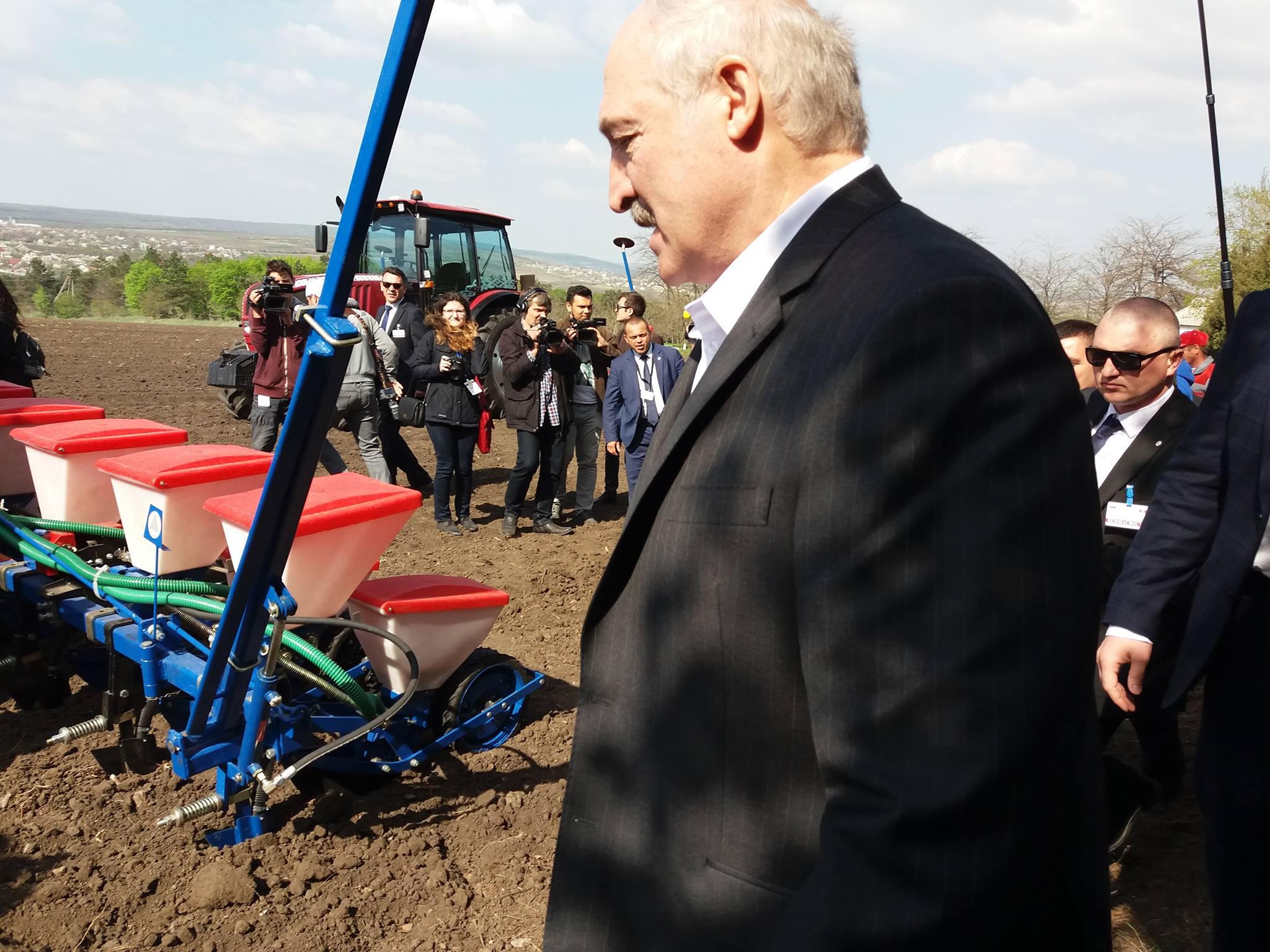"""Lukașenko le mulțumește angajaților Institutului de Fitotehnie """"Porumbeni"""""""
