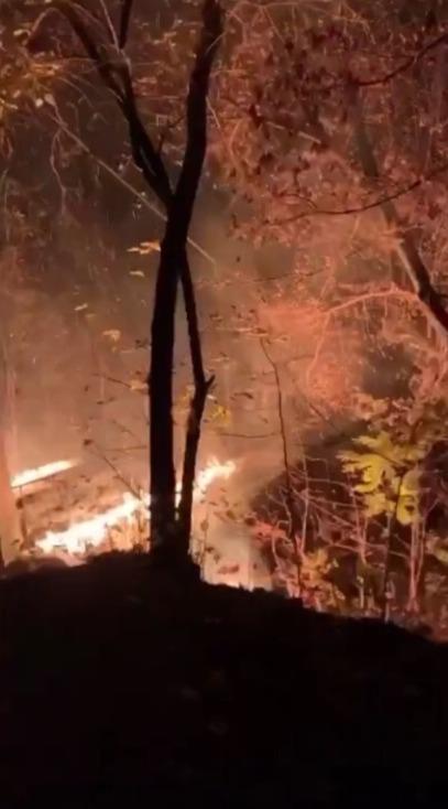 incendiu Valea Trandafirilor