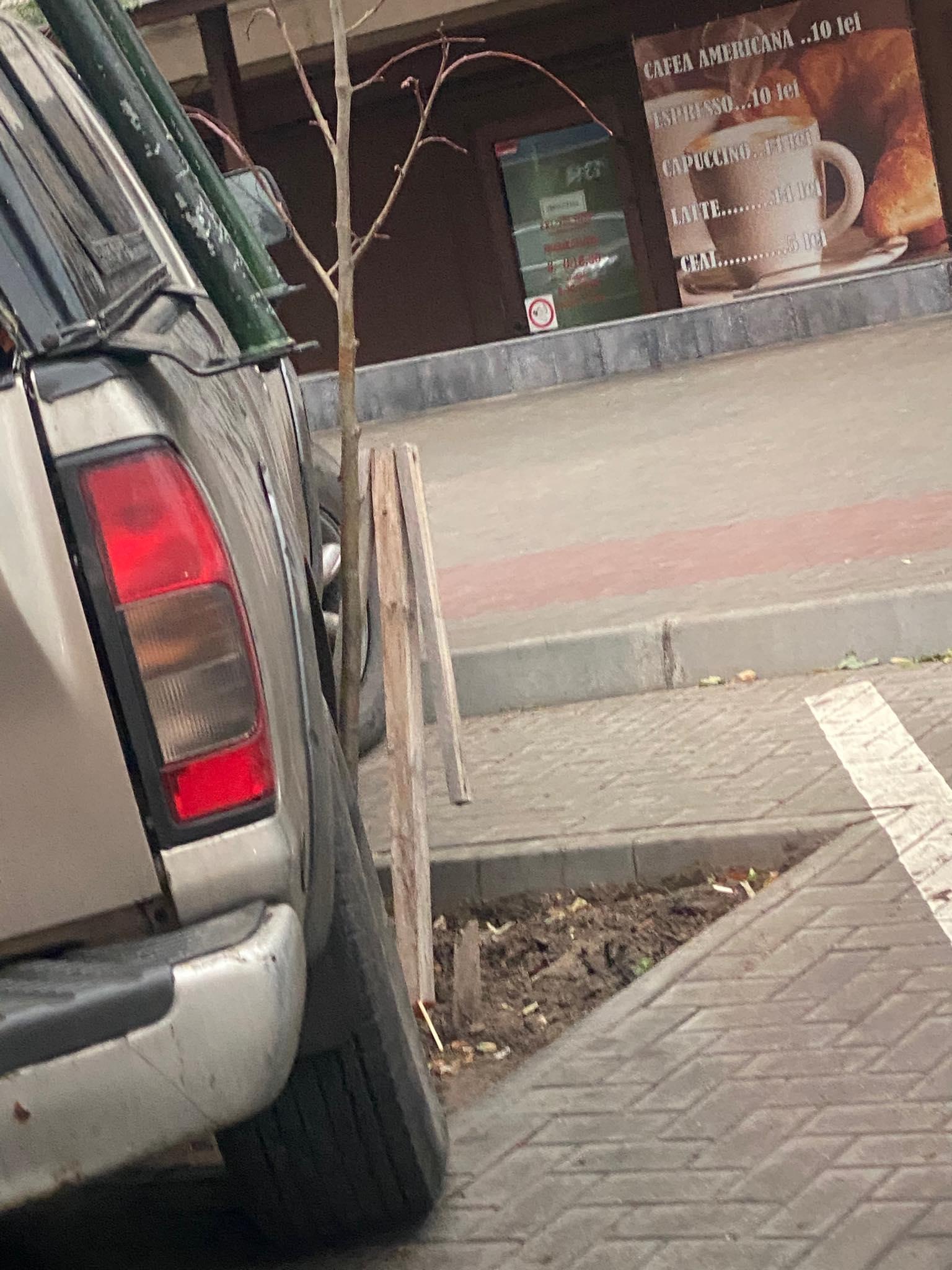 parchez ca boul